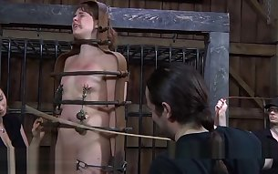 Pretty babe's sweet nipples receives painful torturing